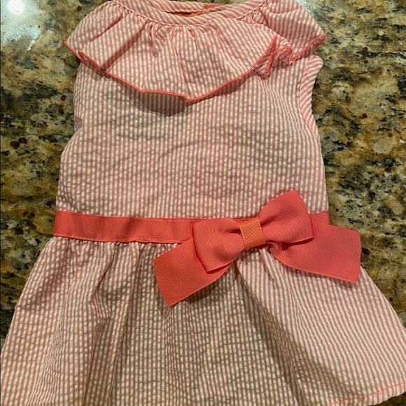 Martha Stewart Pets Pink Dress